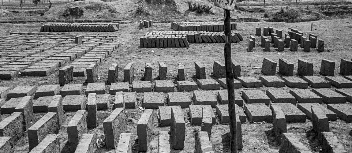 Ladrillos de adobe dispuestos a secar al sol. Nueva Libertad (El Colorado) 1991