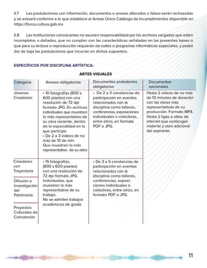 CONVOCATORIA PECDA 2020 VERSION FINAL_page-0011